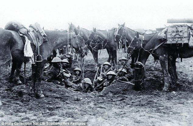 ww1 horses 11.jpg