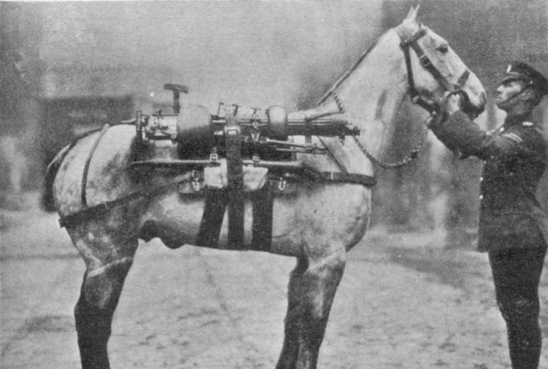 ww1 infantry horse small2.jpg