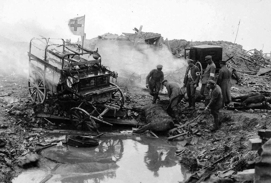 ww1 horse red cross ambulance destroyed with hroses.jpg
