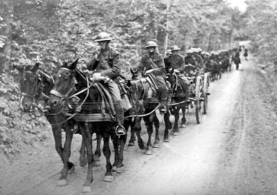 WW1 Artillery Driver.jpg