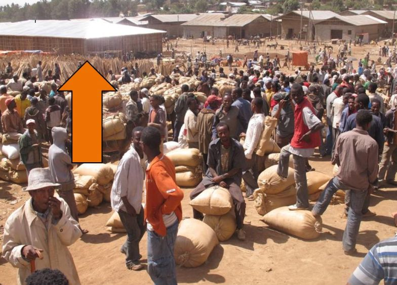 This is a previously constructed and very successful Brooke shade shelter in a busy market in Ethiopia.