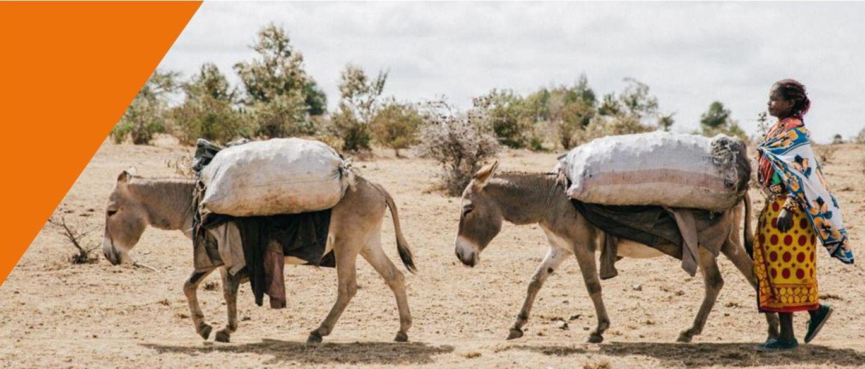 FDowson.Kenya(38of75) cropped and small.jpg