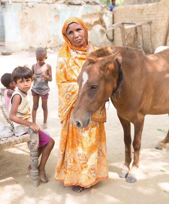 woman horse senegal.jpg