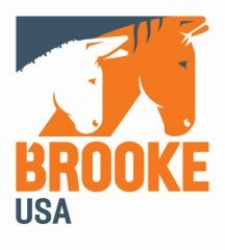 Brooke_USA logo small and low res.jpg