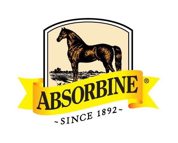 Absorbine with horse.jpg