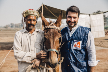 Pappu the mule pakistan SMALL.png