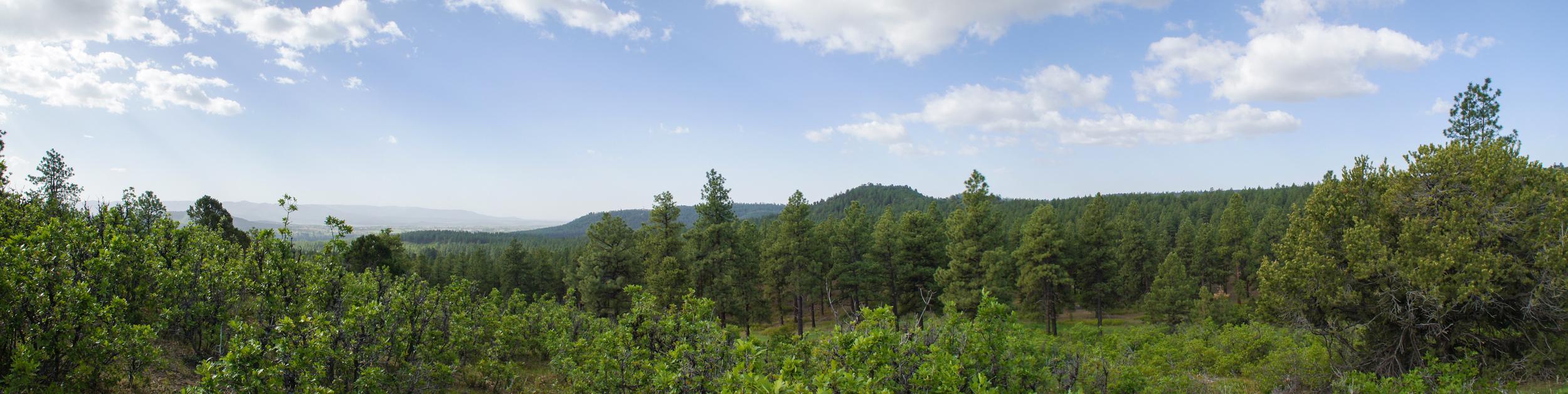 Pano - Eagles Ridge - 2117-23.jpg