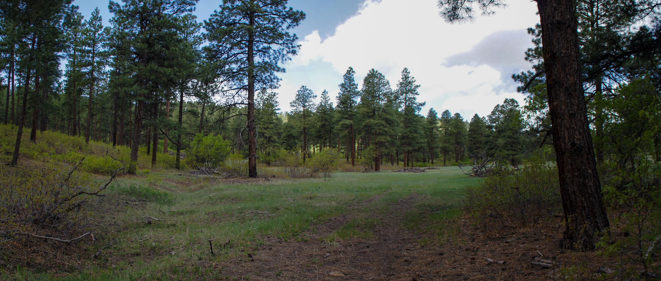 Pano - Eagles Ridge - 2247-50.jpg