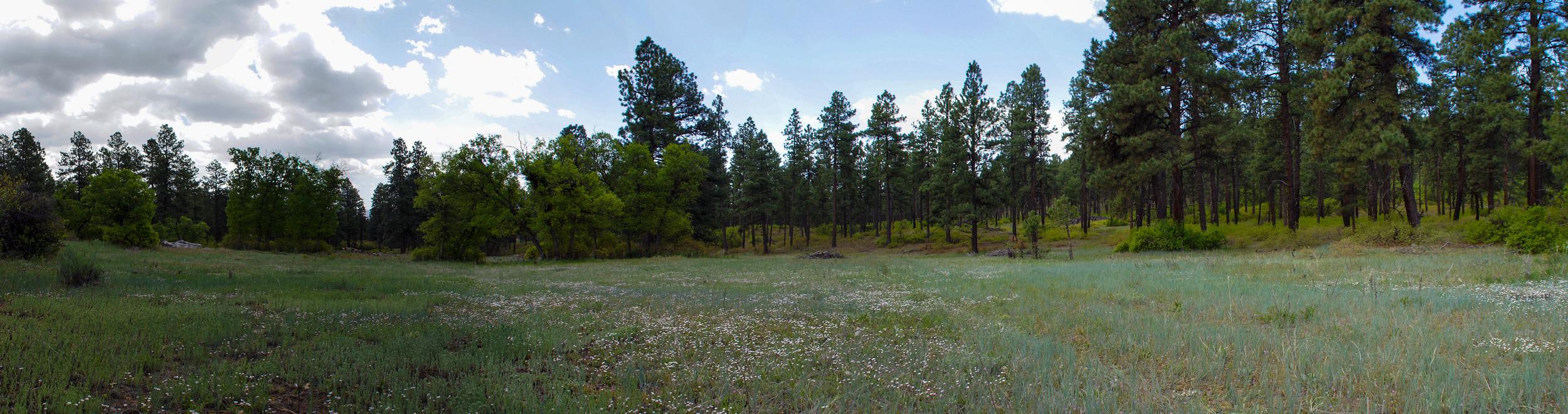 Pano - Eagles Ridge - 2252-63.jpg