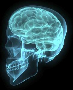 BrainCT-RF960-244x300.png