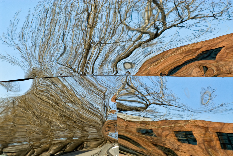 Distortion No. 31