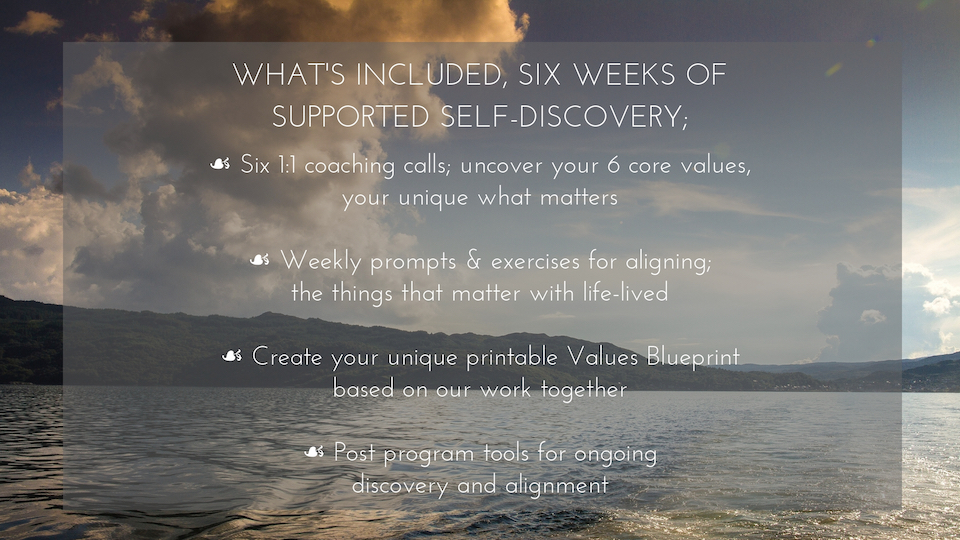 WHAT'S INCLUDED, SIX WEEKS OF SUPPORTED SELF-DISCOVERY;-2.jpg