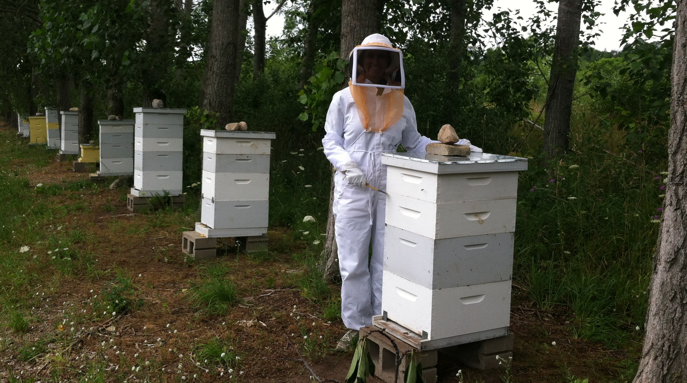 Our daughter, Becky, helping Joel in the bee yard.