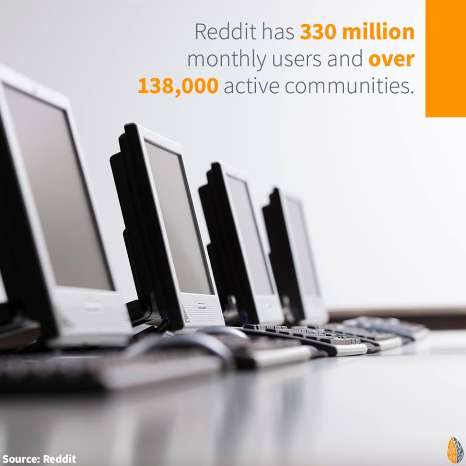 social-media-reddit