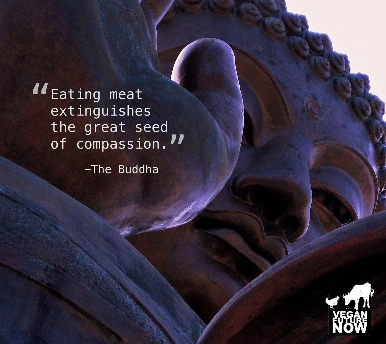 Polin Buddha_Text.jpg