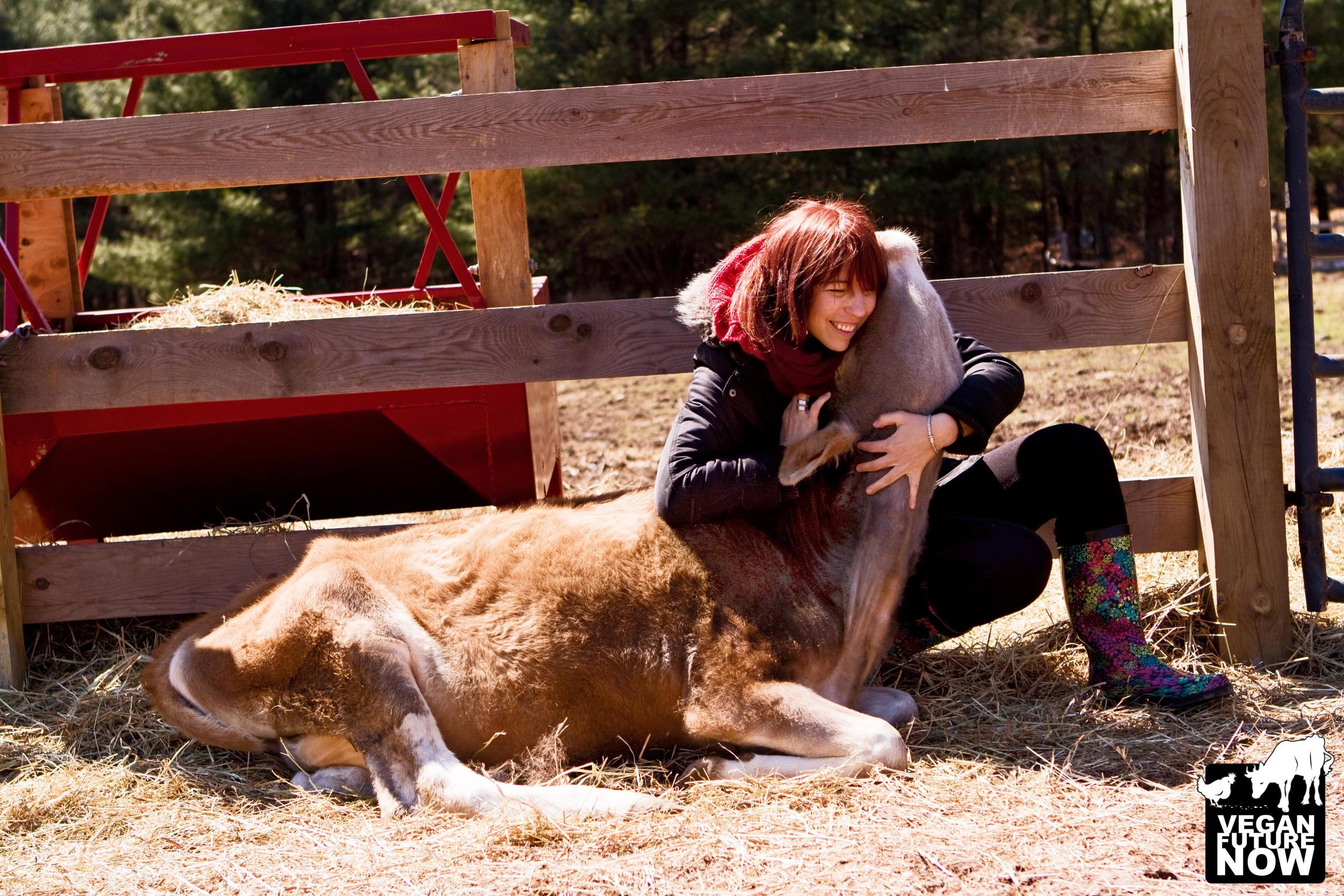 Photo taken at the Woodstock Farm Animal Sanctuary in Willow, New York