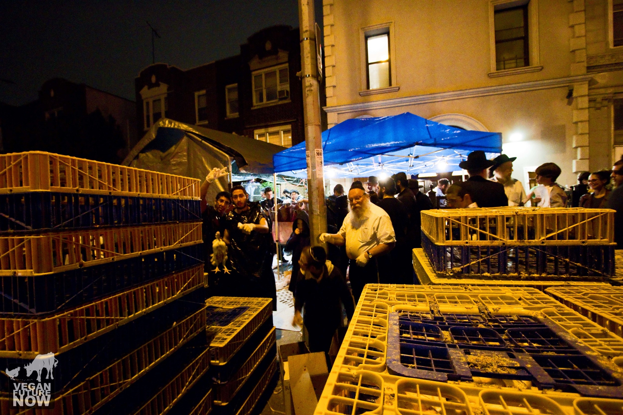 Dozens of large plastic crates, each containing several live chickens, are stacked on the street in front of the make-shift abattoir.
