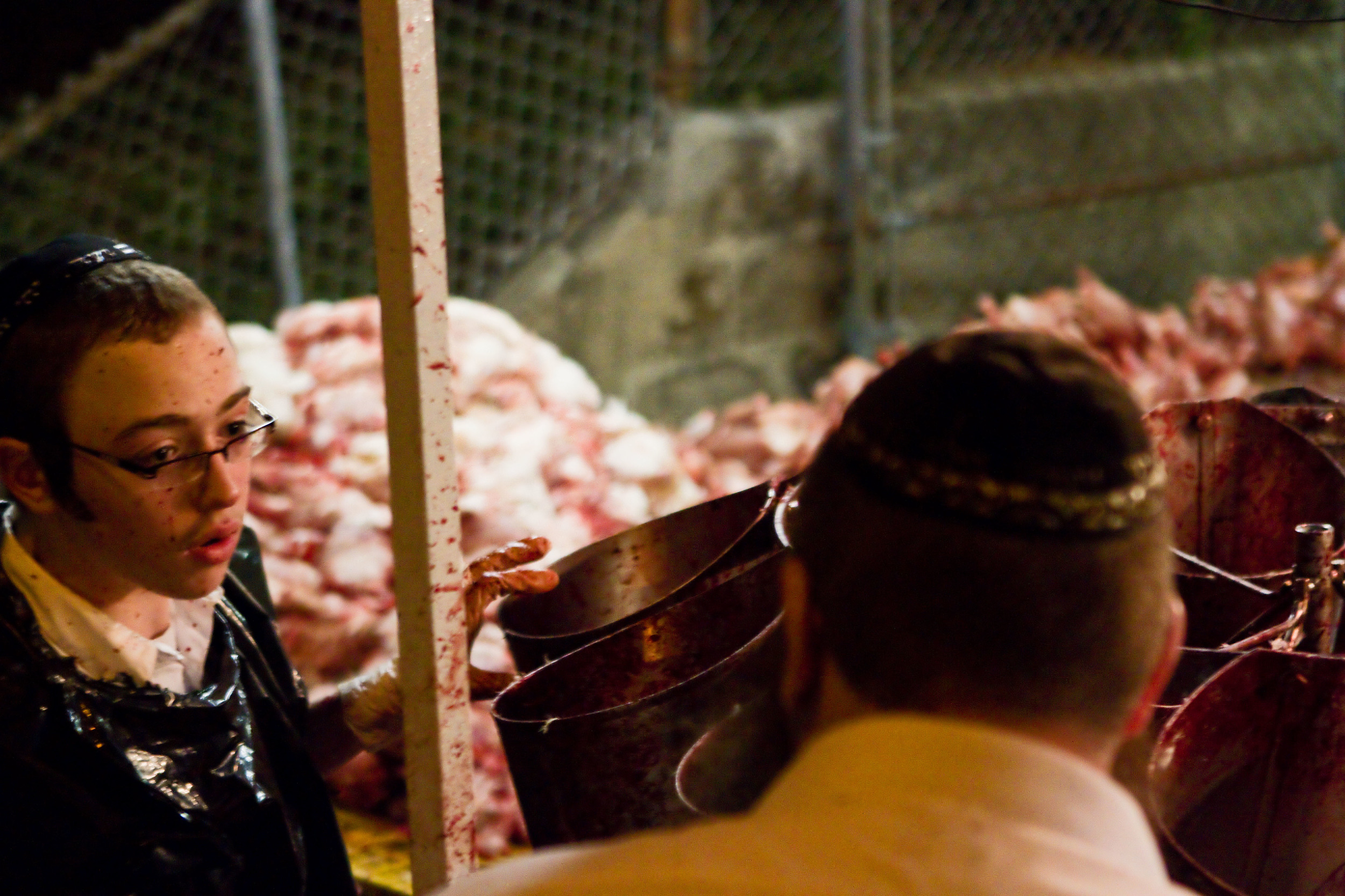 The faces of many of those handling the chickens become splattered with blood.