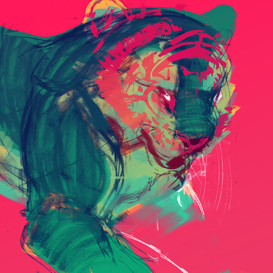 Tiger study in neon. Charcoal and ink. 2014.