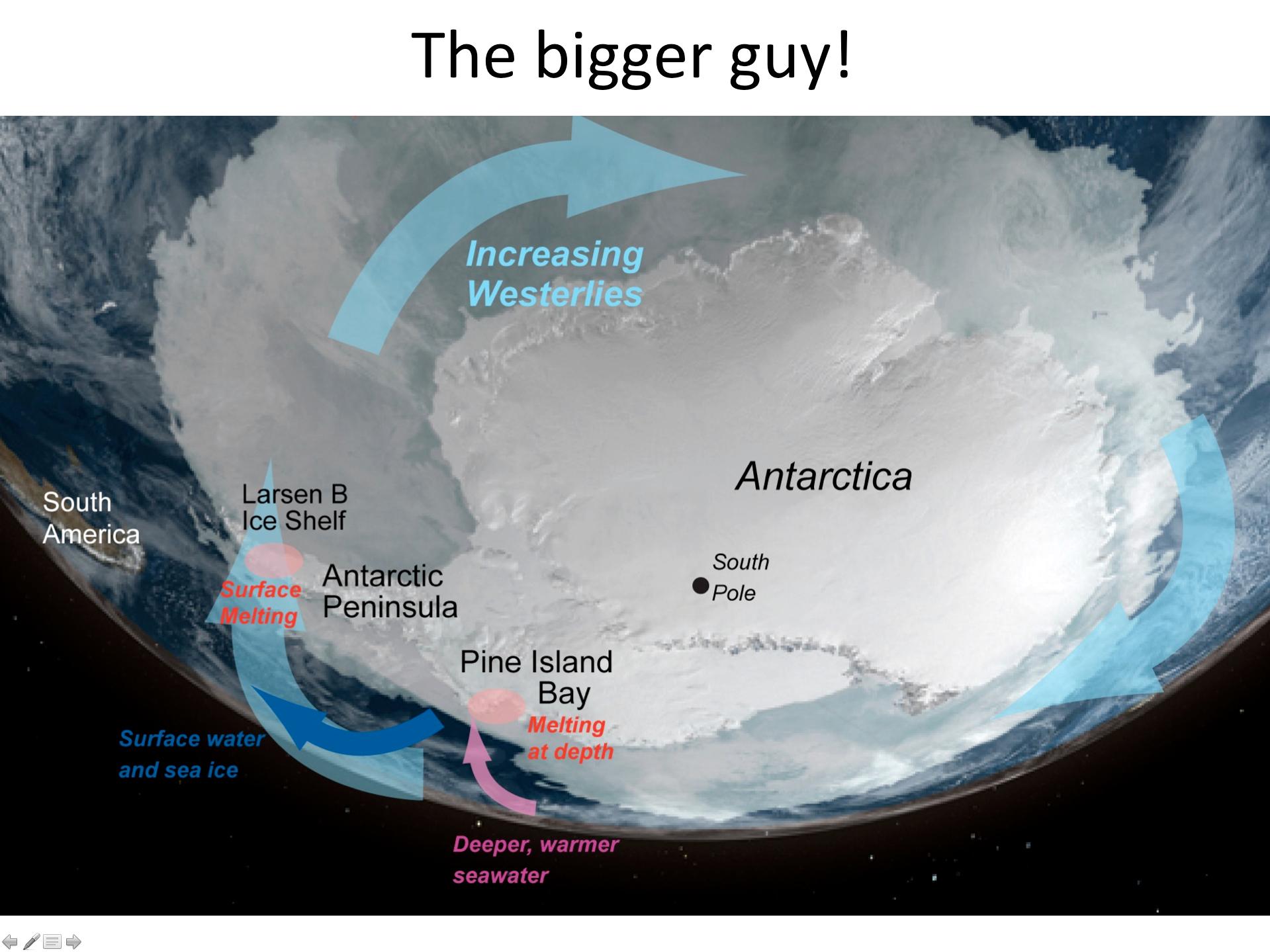 Image courtesy of  NASA/NSIDC