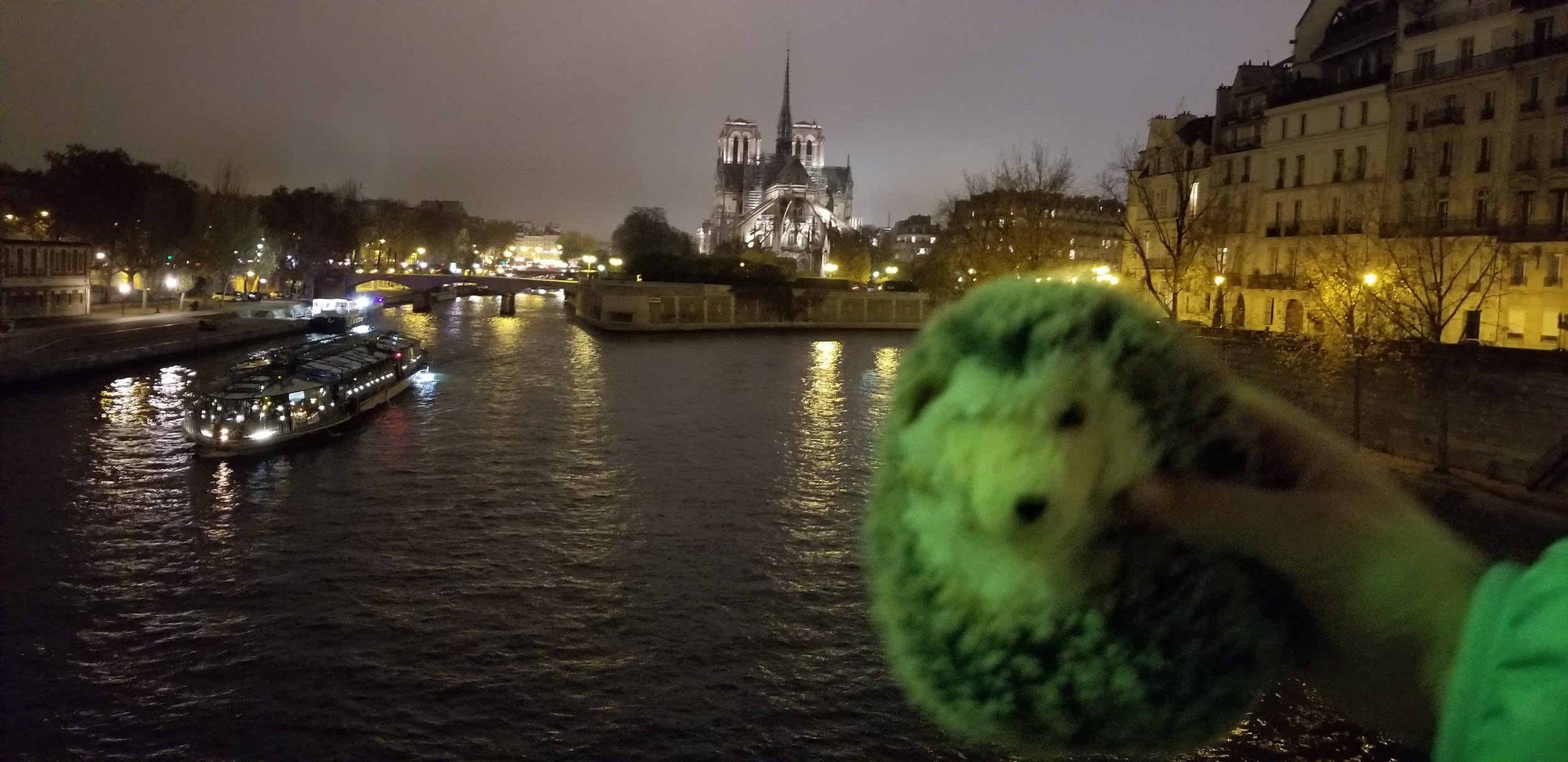 Man…. what a looooong day! I was feeling a little green by the time night arrived - but what amazing sights - that's the Notre Dame again! Sophie dragged me EVERYWHERE - glad she did