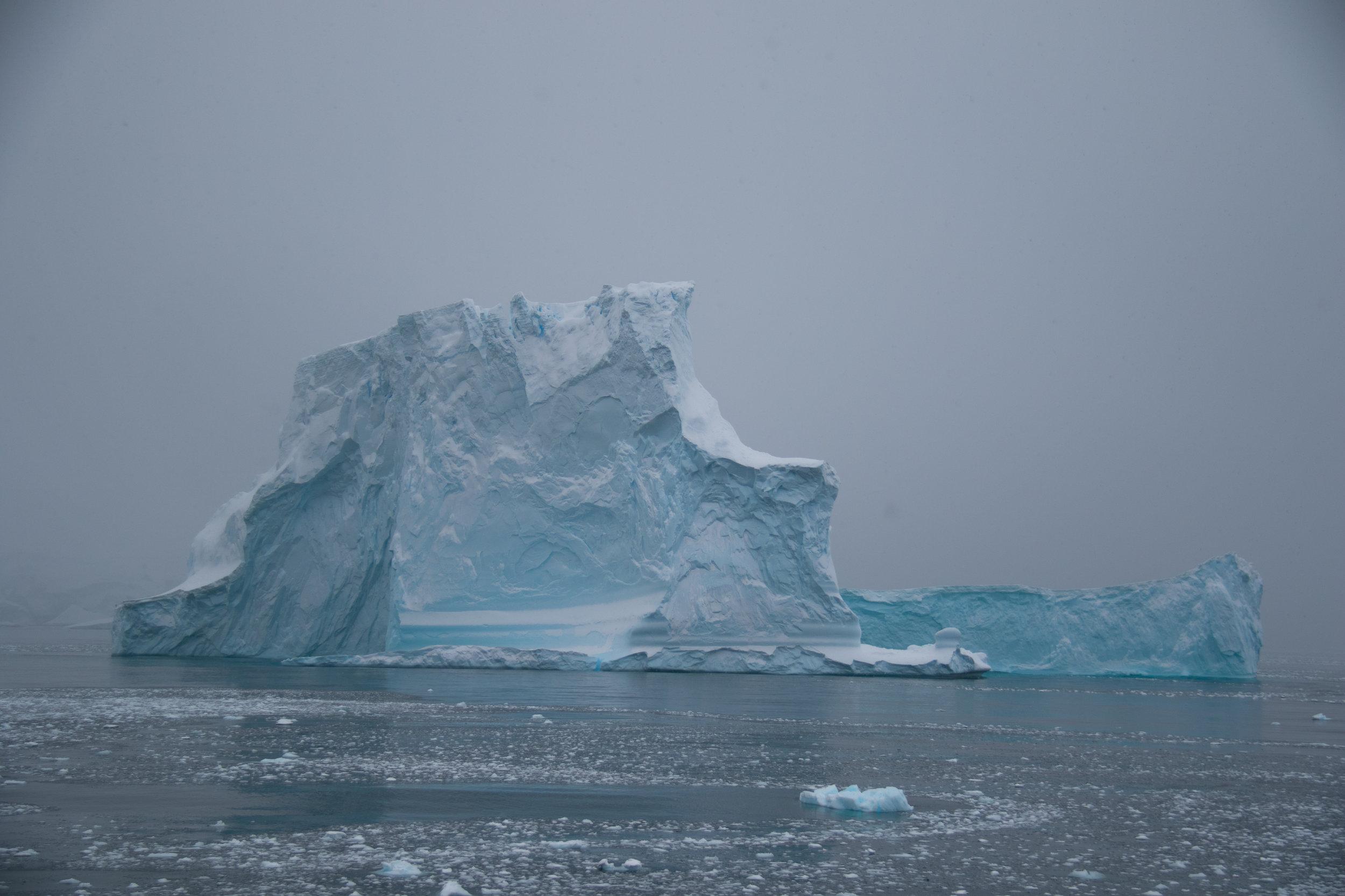 antarctica-9591.jpg