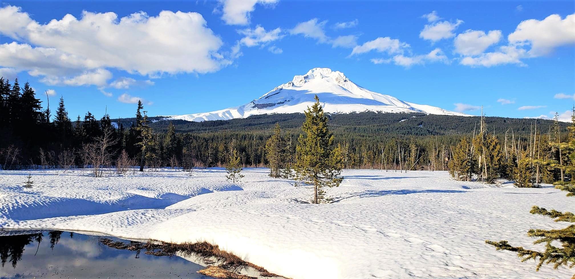 South face of Mt.Hood, Cascade Range, Oregon (Taken by McKayla Meier)