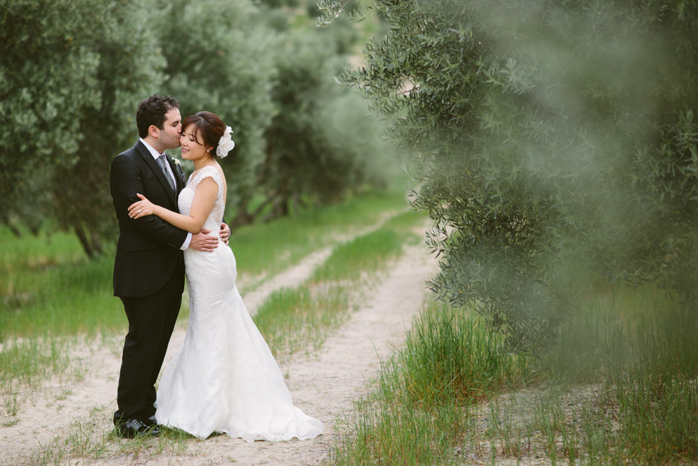 melissa_sung_photography_destination_wedding_spain_andalusia_olive_groves048.jpg