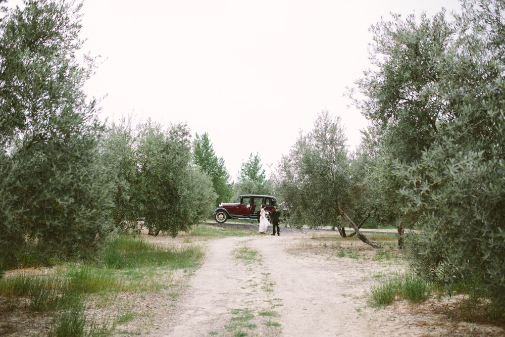 melissa_sung_photography_destination_wedding_spain_andalusia_olive_groves047.jpg