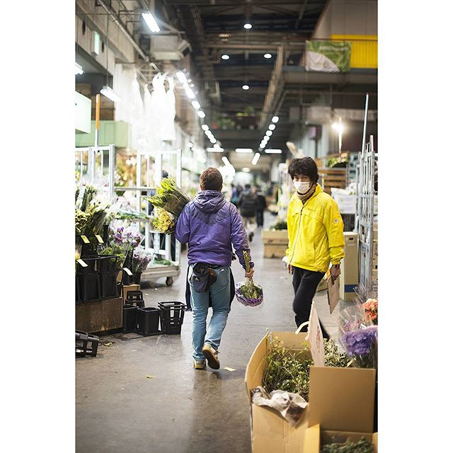 Day 8 | 5am at Ota flower market #market #dawn #yellow #purple