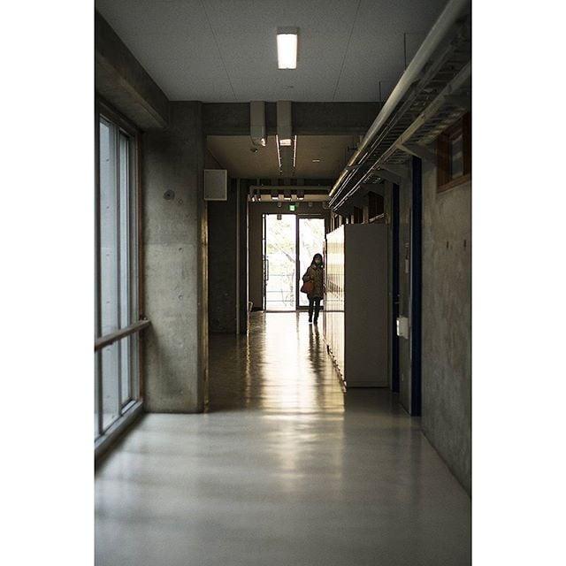 Day 13 | Corridor #geidai #tokyouniversity #backlit