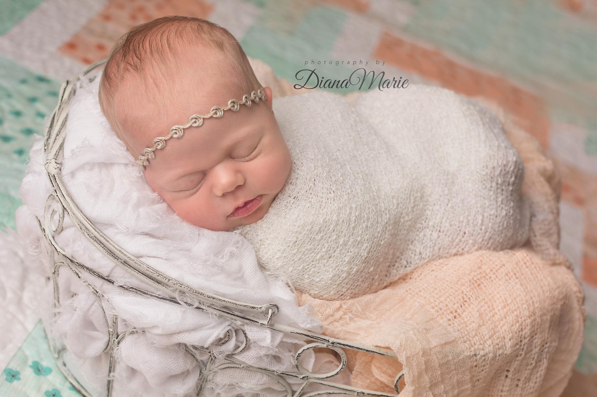 Titling/Alt Text/Description: 1. Jacksonville 2. newborn photography jacksonville 3. newborn in basket 4. newborn quilt 5. st augustine
