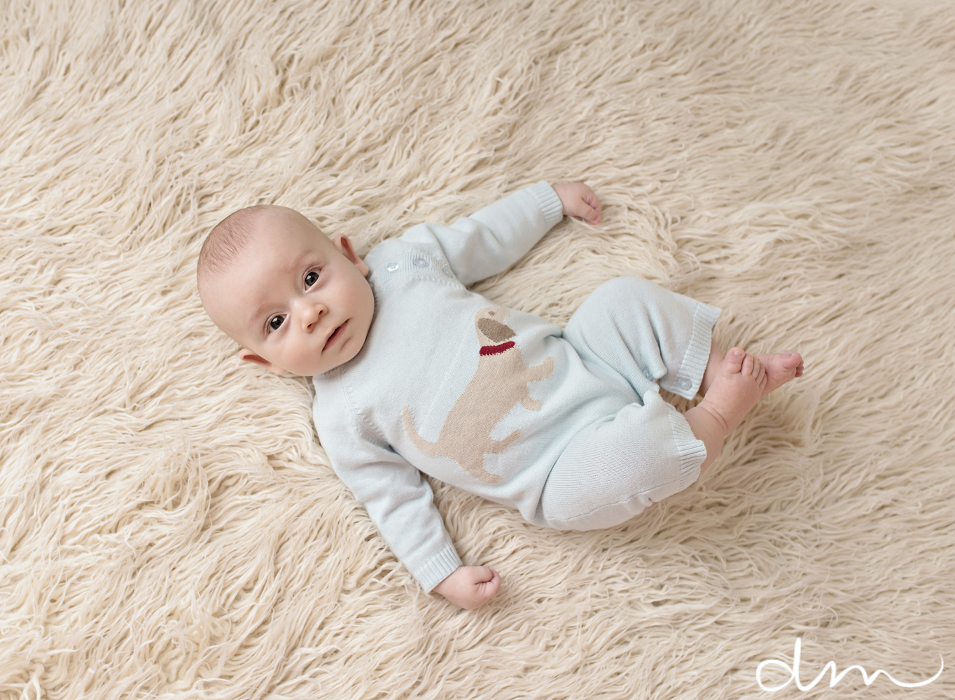 Titling/Alt Text/Description: 1. newborn photography jacksonville 2. st augustine newborn photography 3. jacksonville baby photographer 4. photography by diana marie 5. taco pose 6. baby on gray blanket
