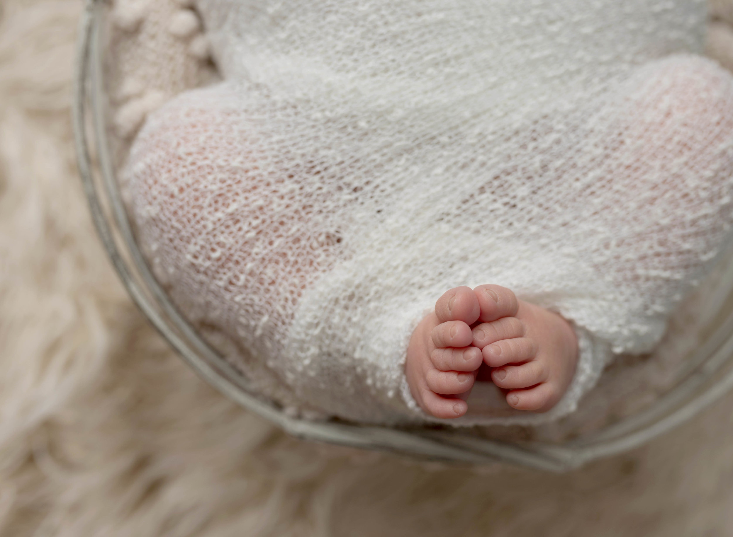 Titling/Alt Text/Description: 1. newborn photography jacksonville 2. newborn in basket 3. photography 4. st augustine photographer 5. parents and baby 6. studio lighting 7. swaddled baby