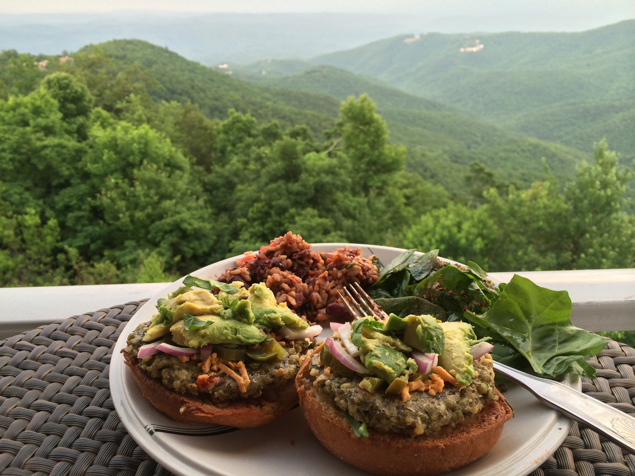 Thai Temple Burgers over the Blue Ridge. Gluten, Soy, Dairy Free Veggie Burgers that are Spectacularly Good!
