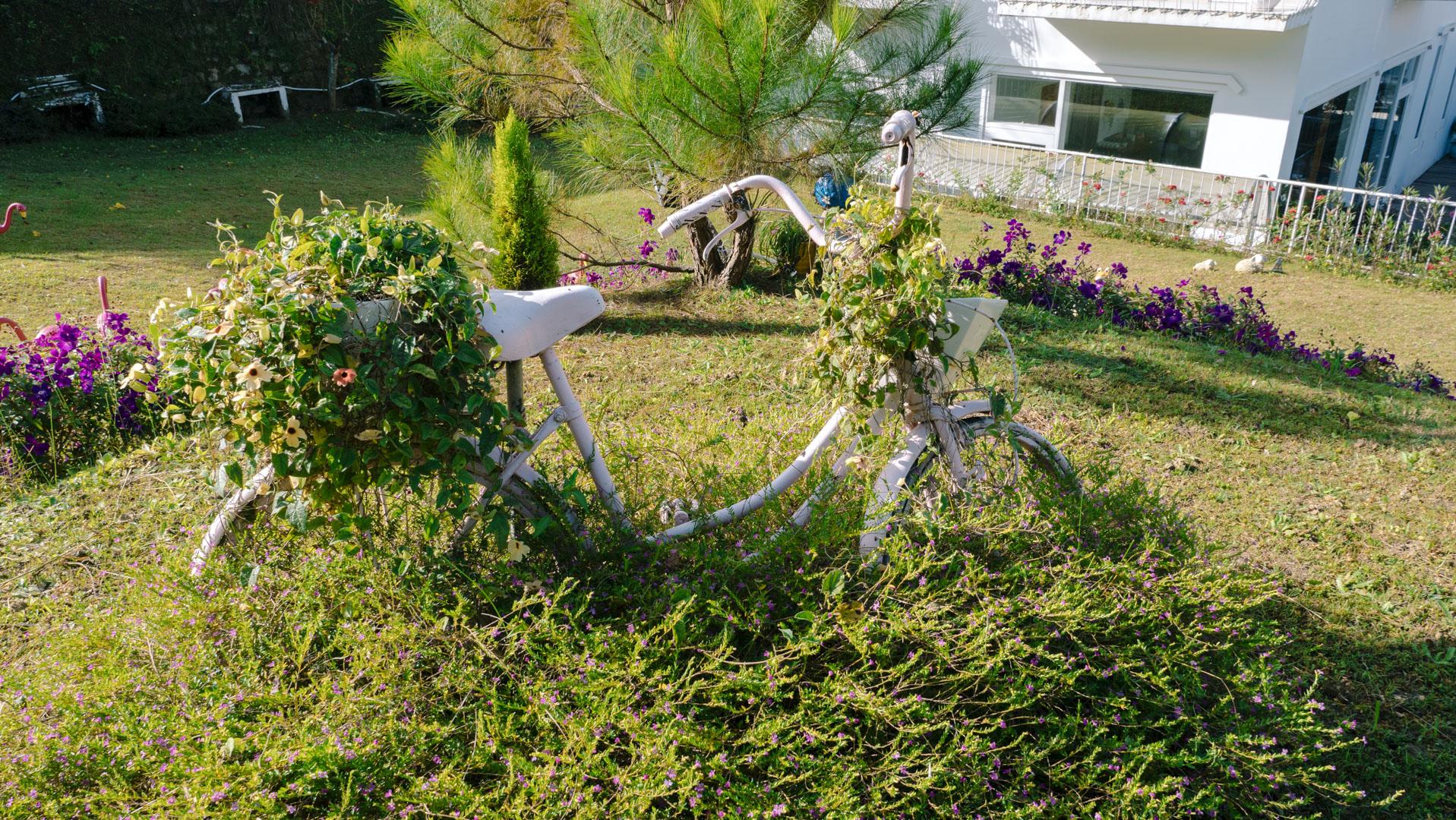Dạo quanh khu vườn Lữ Tấn, bạn sẽ không khỏi bắt gặp những tiểu cảnh xinh xắn, được Lữ Tấn tỉ mẩn chăm chút hàng ngày