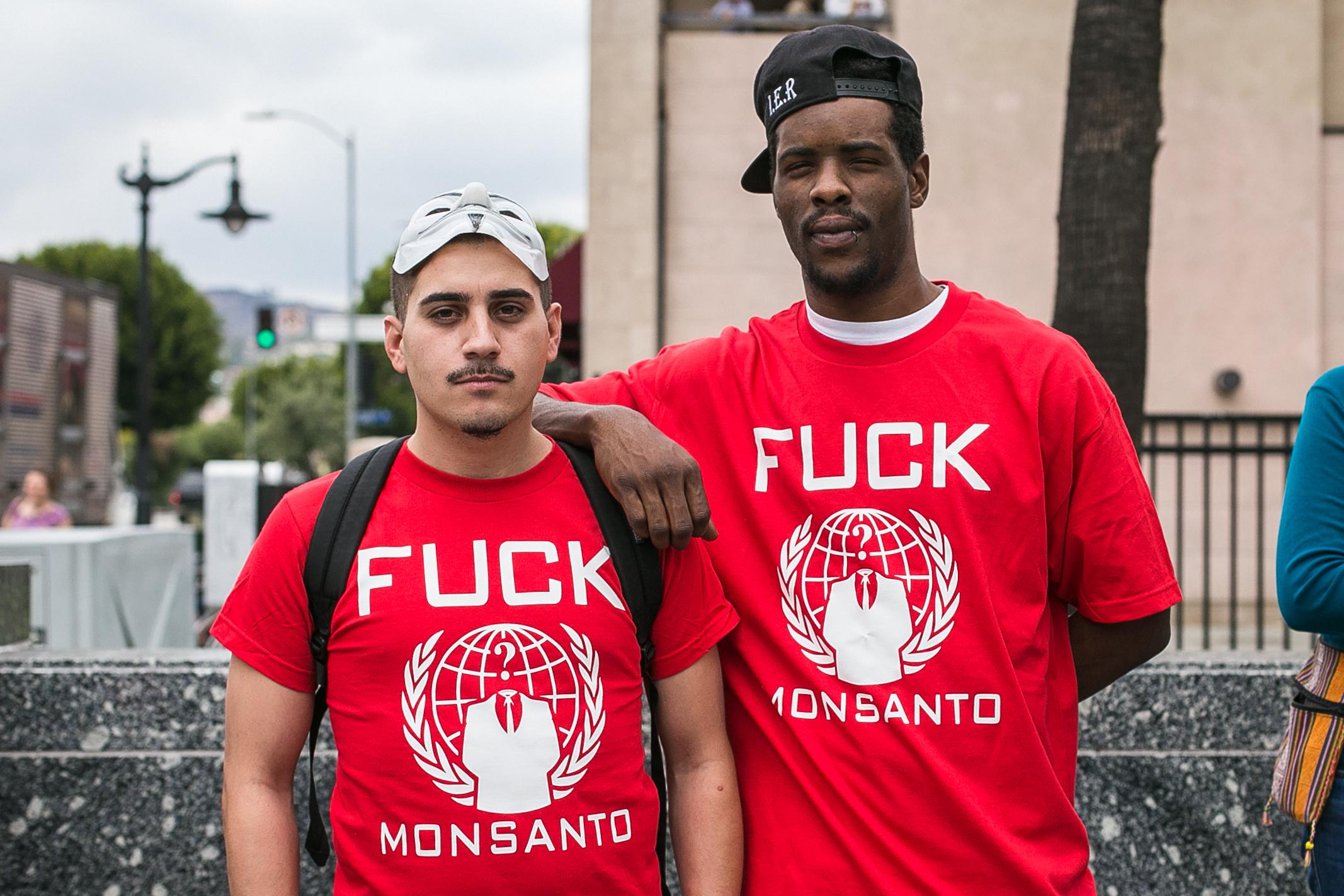 Monsanto LA-49.jpg