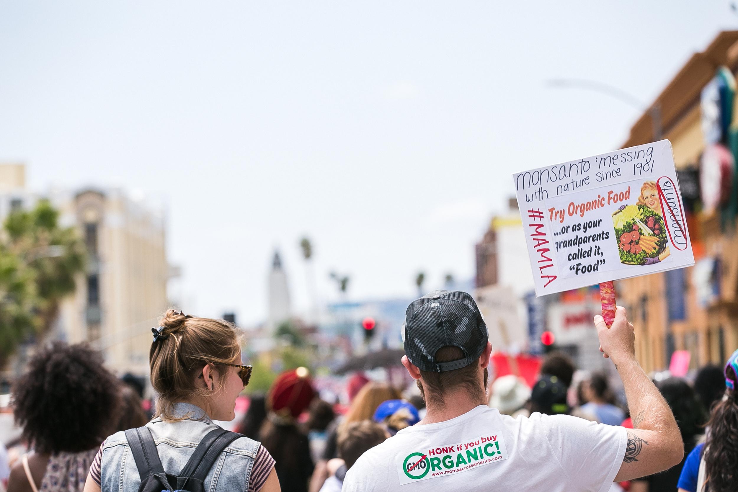 Monsanto LA-53.jpg