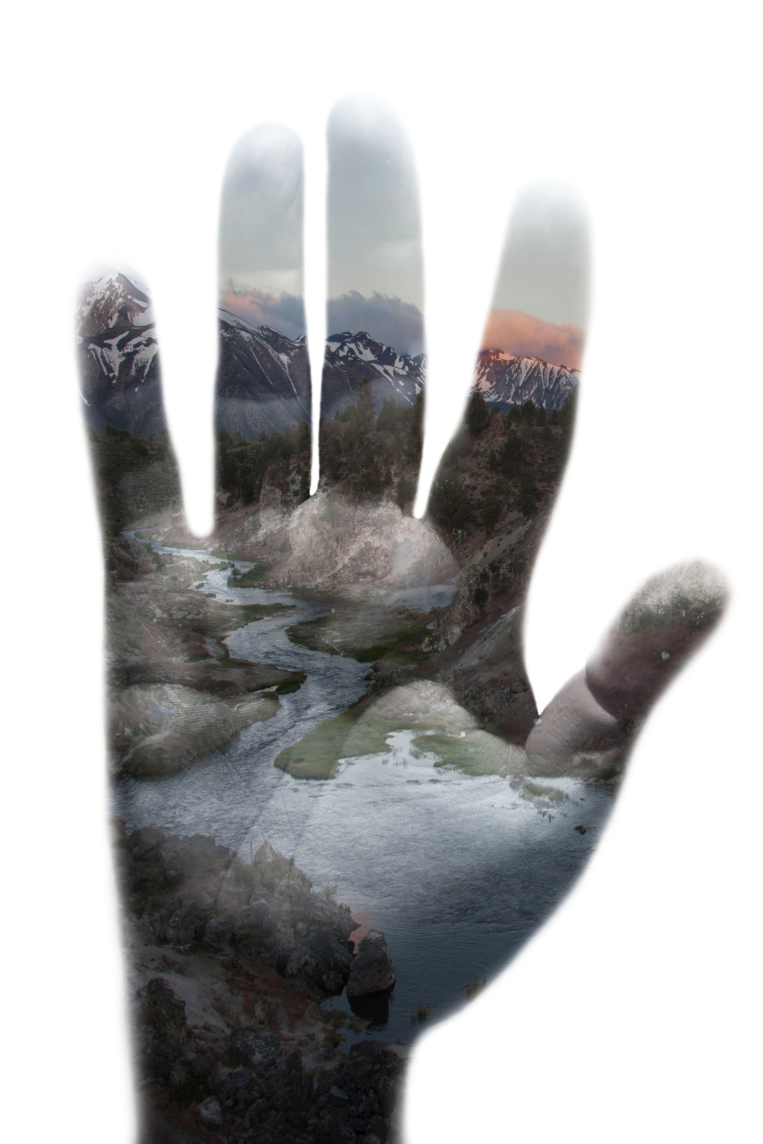 Hand3 copy.jpg