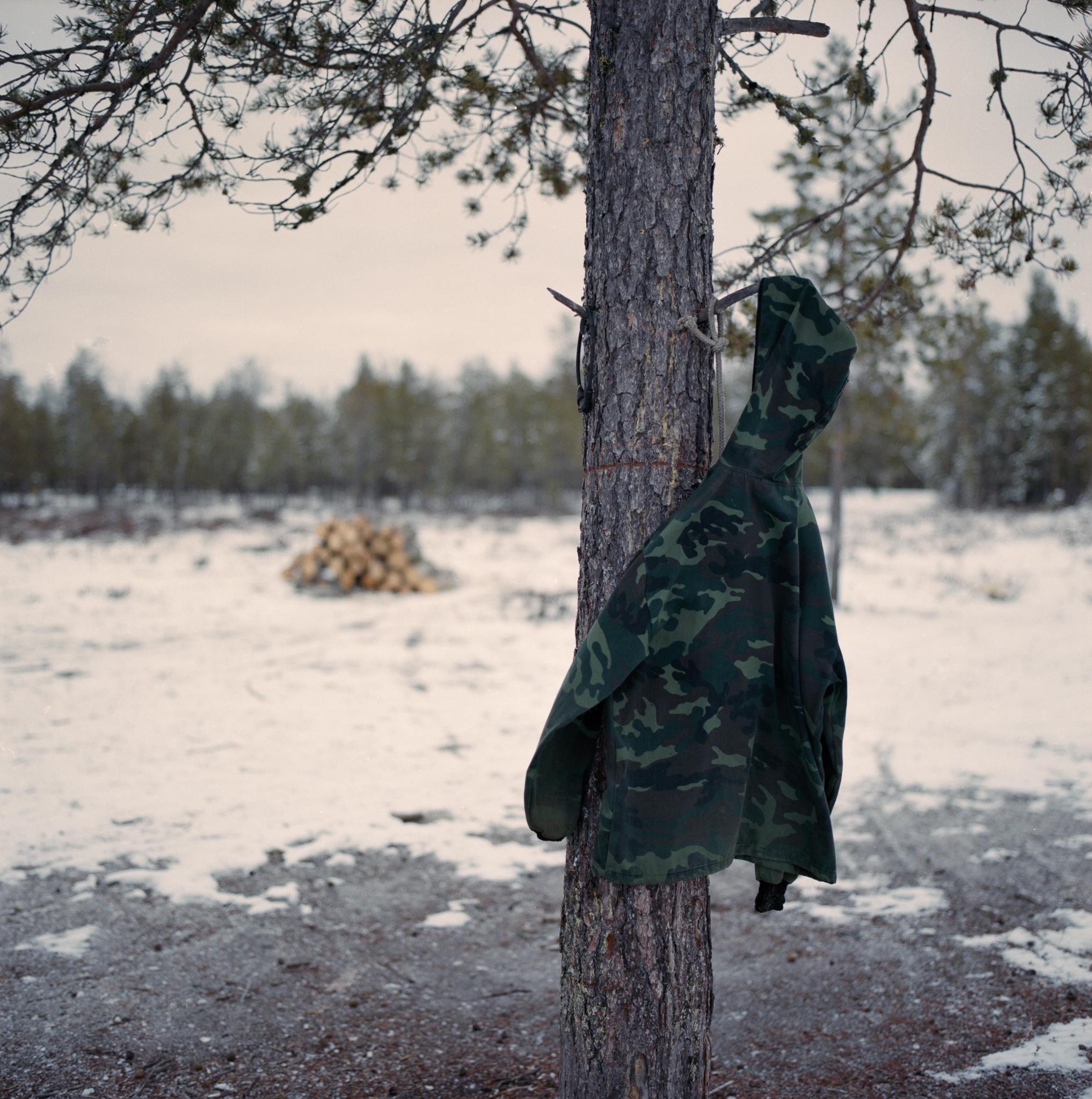 Tundra 16.jpg