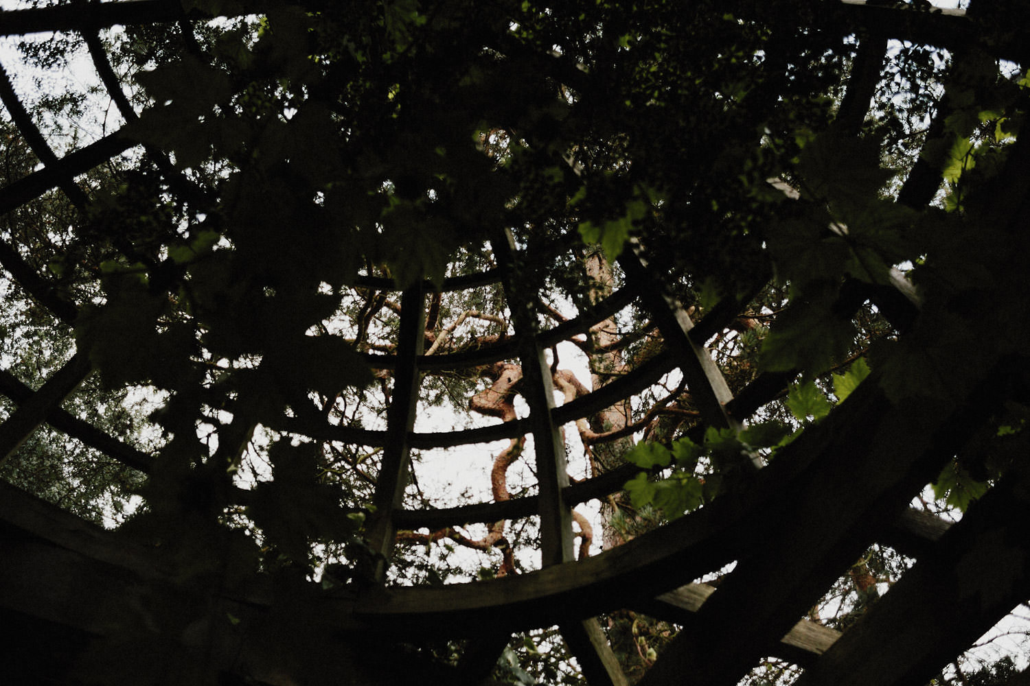 070-the-hill-garden-and-pergola-in-london.jpg