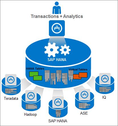 Transactions + Analytics