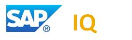 SAP HANA + SAP IQ -
