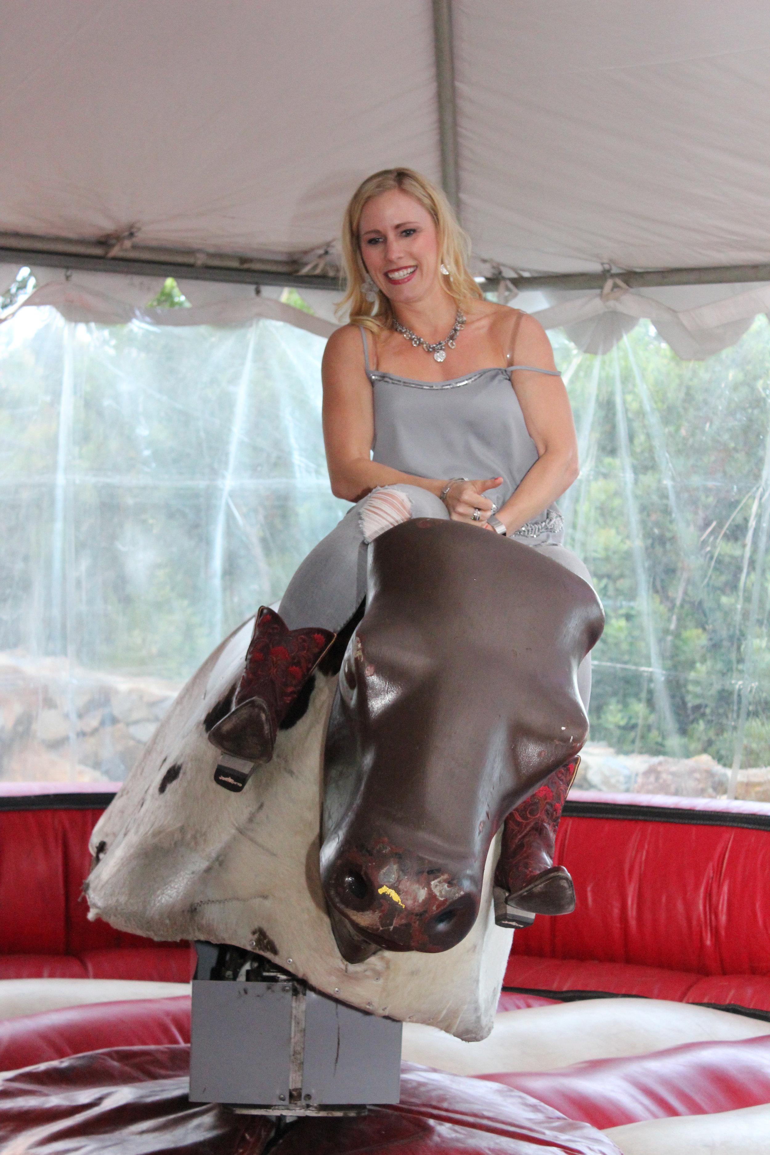bull 10.jpg