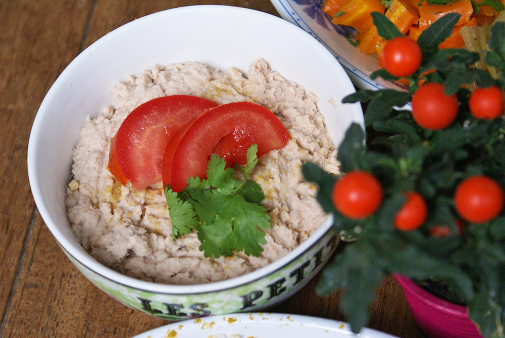tartinade au thon sans gluten sans lactose sans oeuf