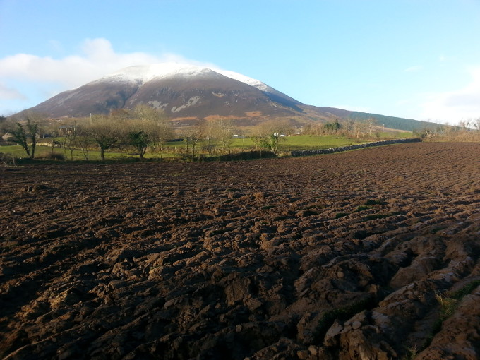 Fields in the shadow of Nephin mountain are ploughed in early Spring, ready for Nephin Whiskey barley planting.