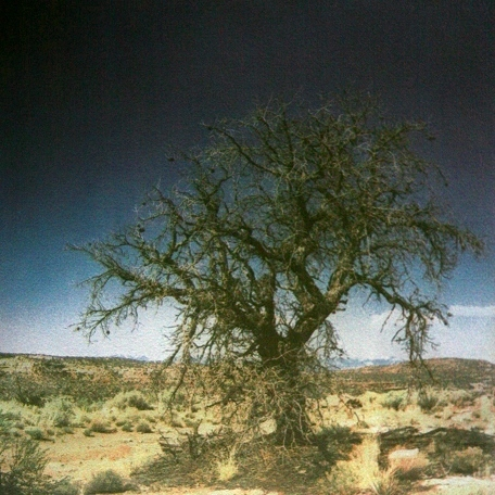 UTAH DESERT  , from the Landscape series; tri-color gum bichromate. Limited Edition 2/10.