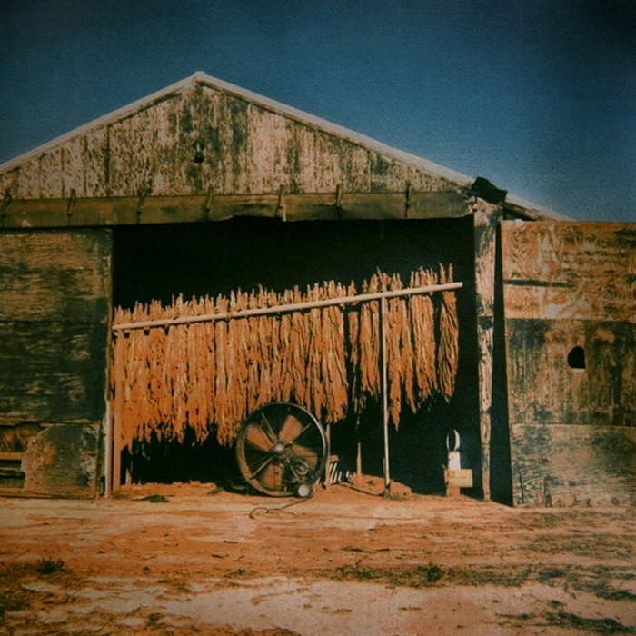 BURLEY TOBACCO; tri-color gum bichromate; from the Landscape series. Limited Edition 3/10