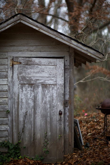 Shed  , from  Interiors  series.  Pigment print.
