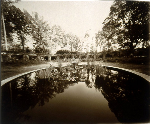 Raleigh Rose Garden  (contact print from 20x24 pinhole camera) ©Diana H. Bloomfield